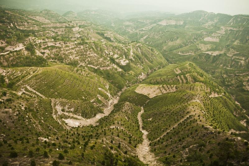 Reforested mountains in Shanxi province, China.
