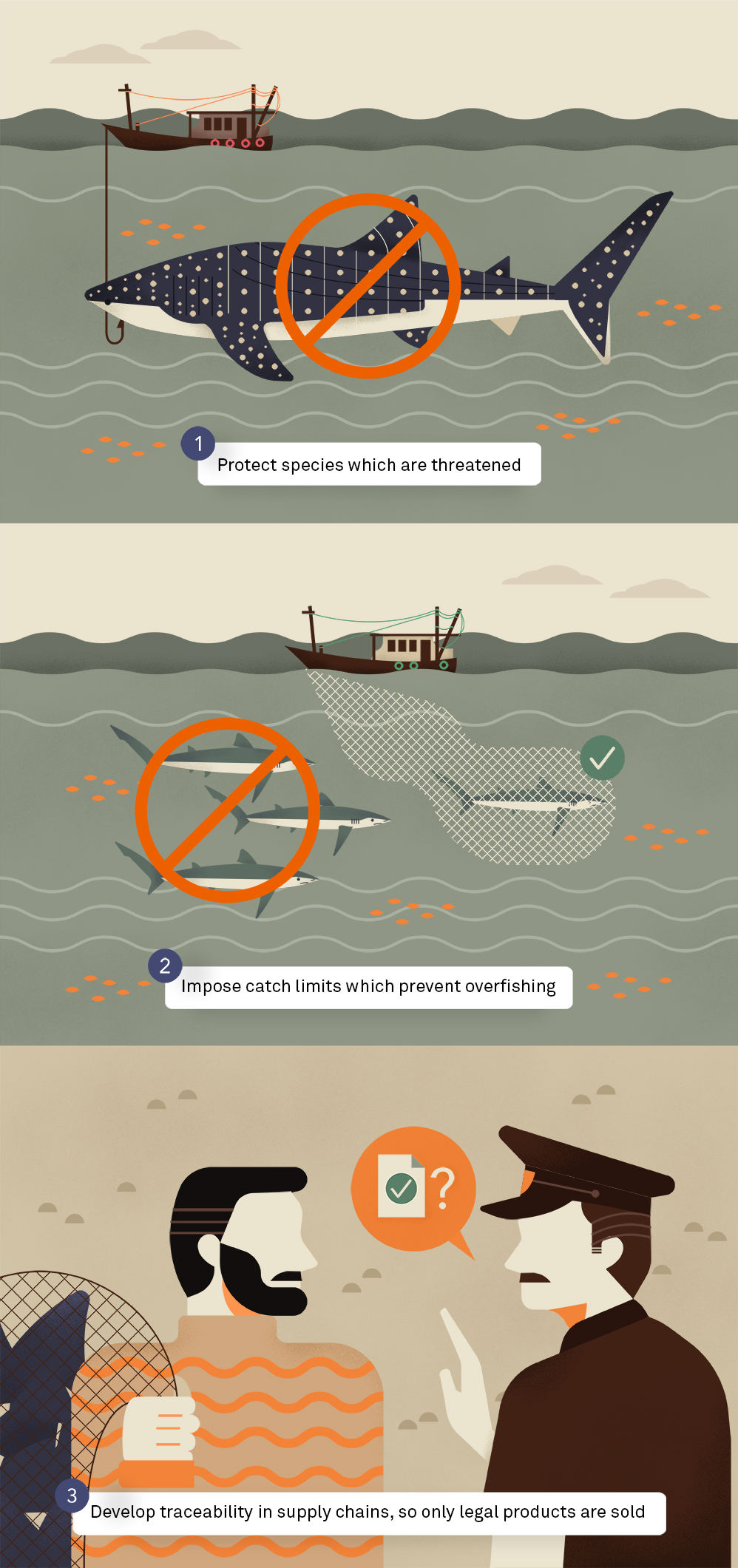 An infographic showing the three different methods of sustainably catching sharks.