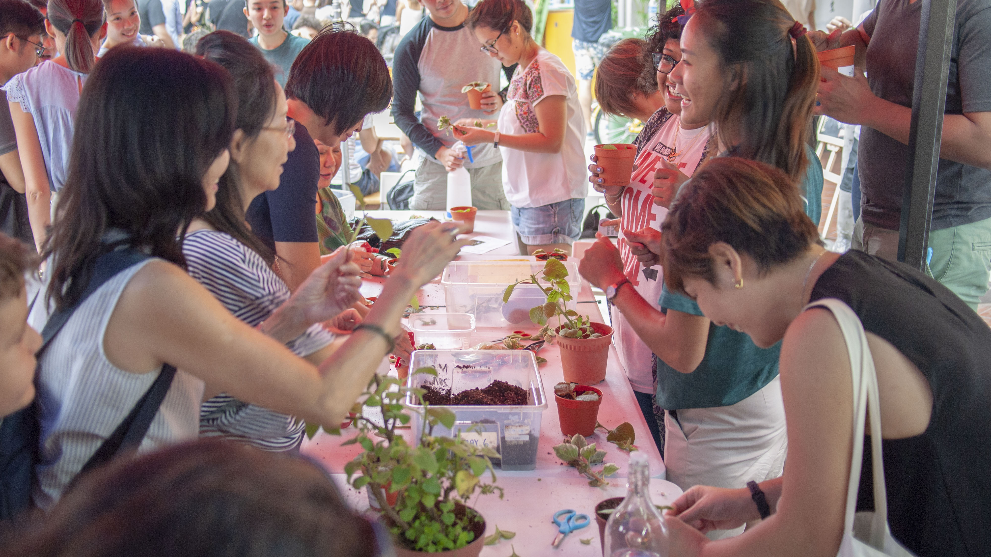 Growing our own: The role we play in ensuring Singapore's food resilience