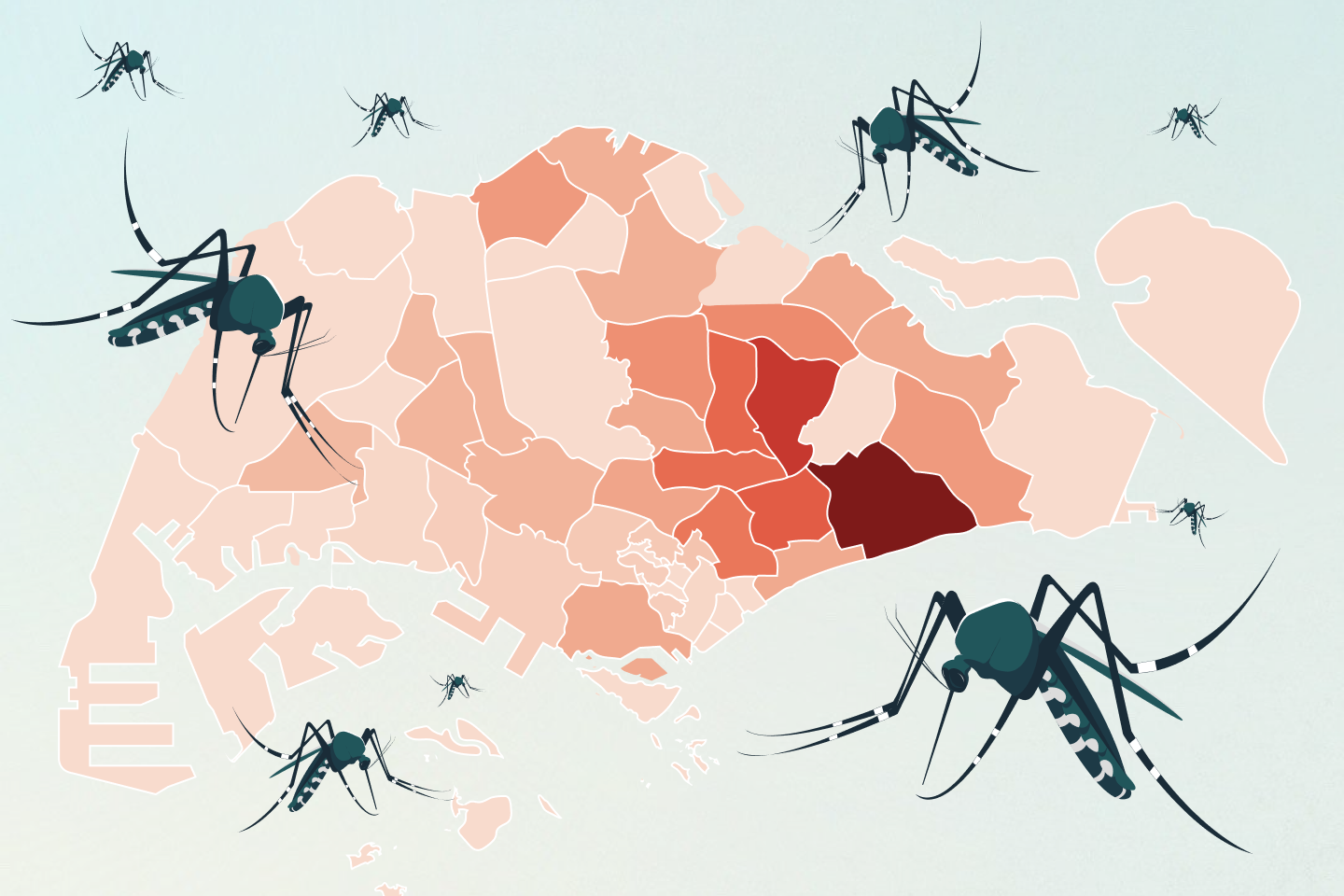 The curious case of dengue in Singapore: Why have clusters surged in 2020?
